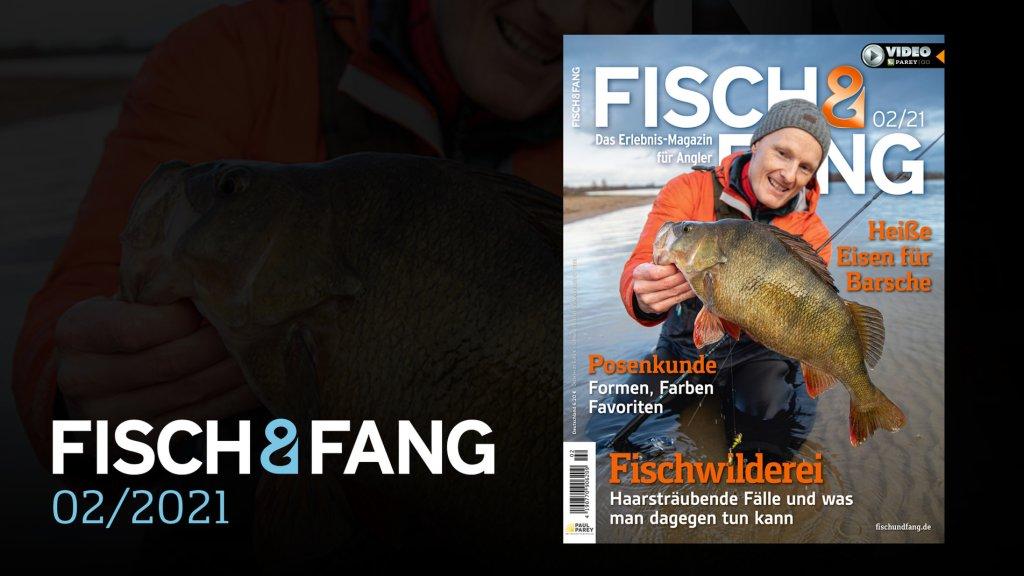 FISCH & FANG 02/2021
