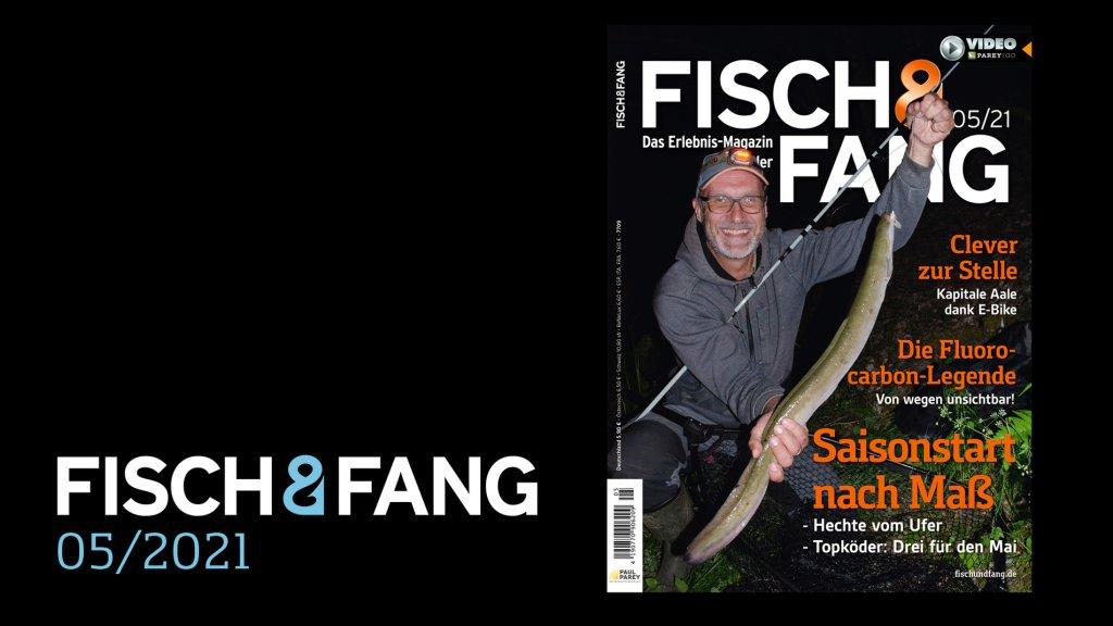 FISCH & FANG 05/2021
