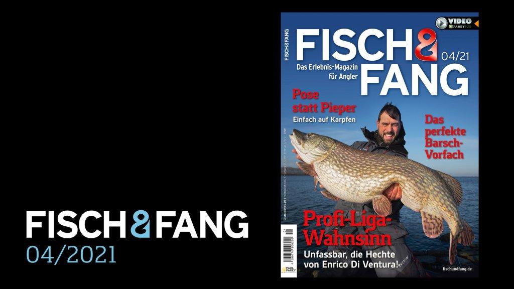 FISCH & FANG 04/2021