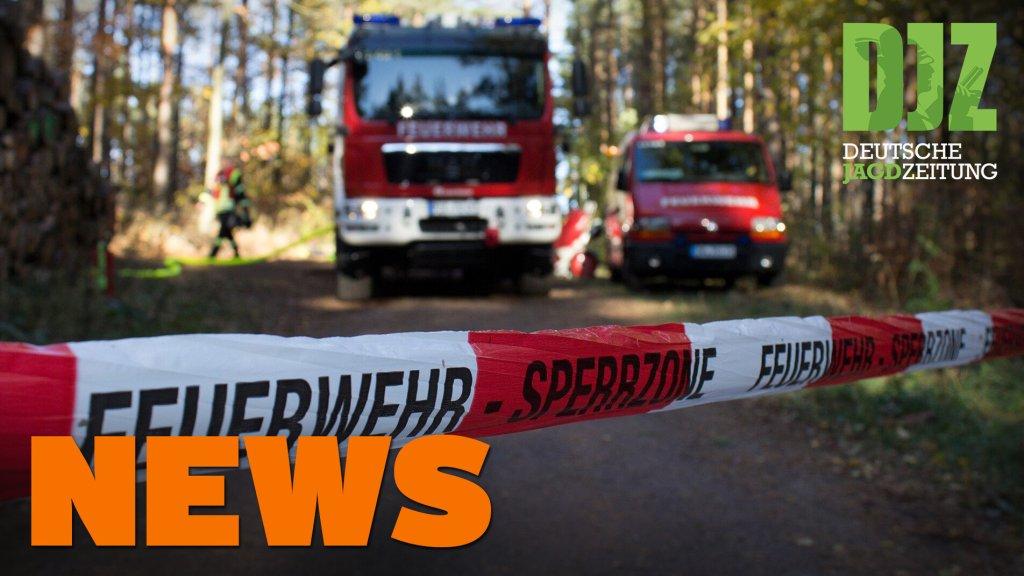 Radfahrer kollidiert mit Reh, Wölfe in der Heide, brennender Hochsitz - DJZ NEWS 41/2021