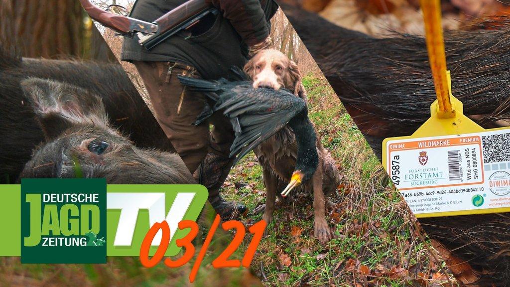 DJZ-TV Ausgabe März 2021