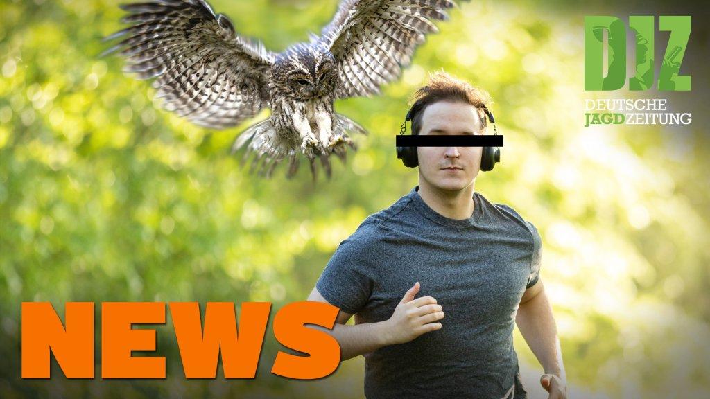 """Jäger stürzt ab, Wildererbande gefasst, Jäger """"schnappt"""" Serieneinbrecher u.w. - DJZ-News 21/2020"""