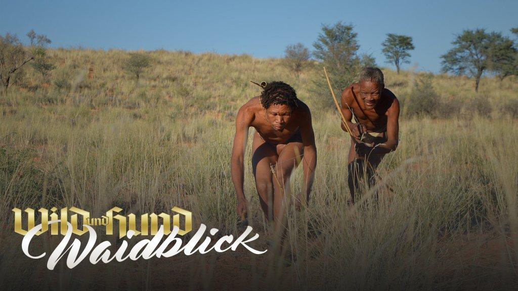 Die Buschmänner der Kalahari - Auf Gnu bei den Khomani-San