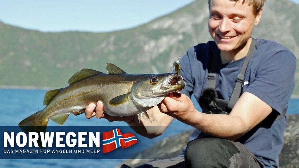 Ultraleicht am Fjord