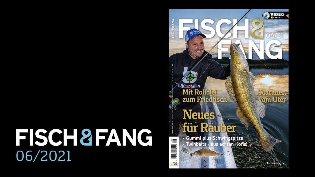 FISCH & FANG 06/2021