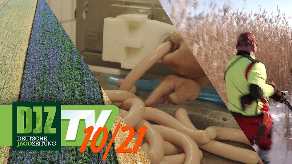 DJZ-TV Ausgabe Oktober 2021