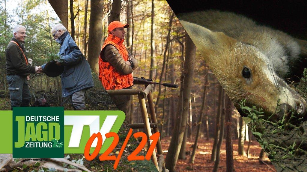 DJZ-TV Ausgabe Februar 2021
