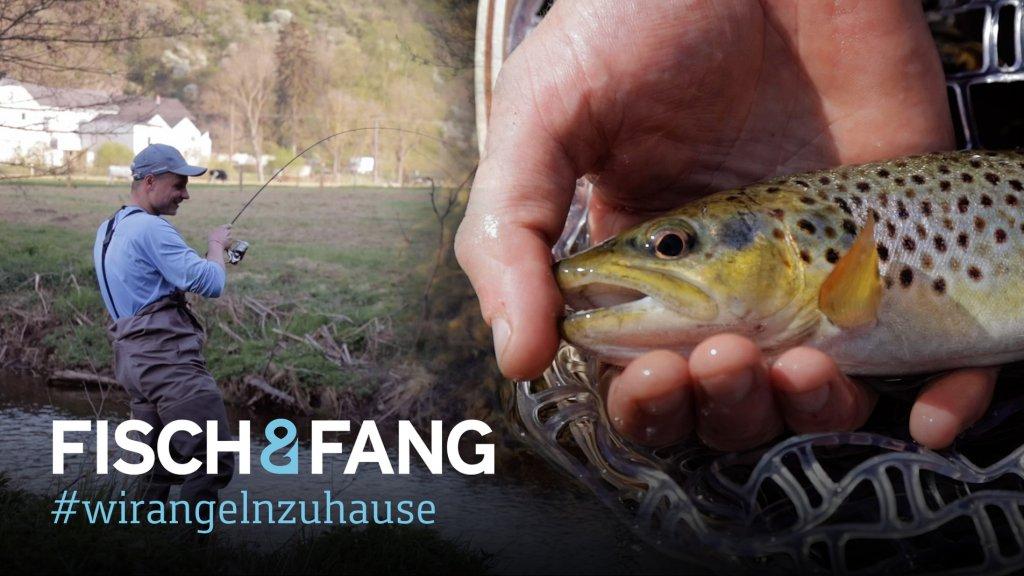 #WirAngelnZuHause: Am Forellenbach