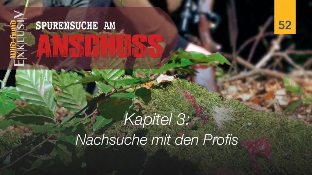 Spurensuche am Anschuss - Kapitel 3 Nachsuche mit den Profis | WILD UND HUND-Exklusiv 52