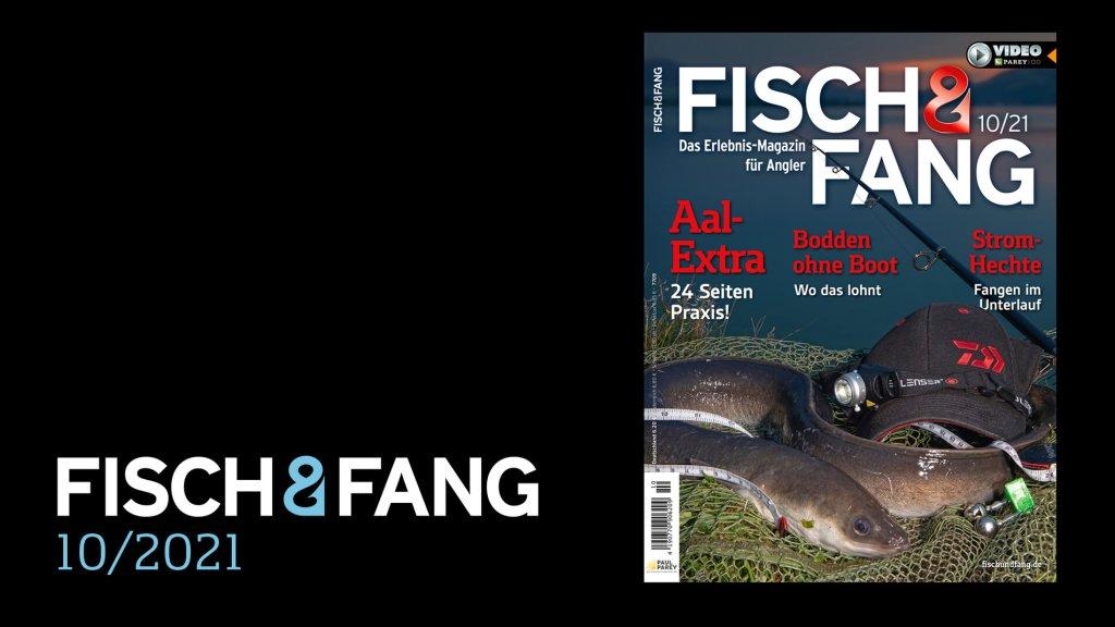 FISCH & FANG 10/2021