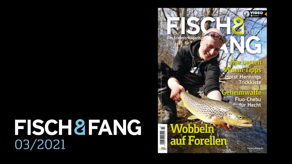 FISCH & FANG 03/2021